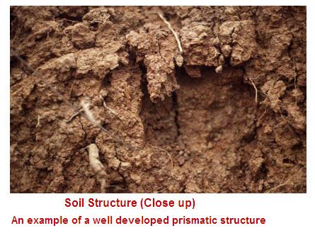 Soil structure part 1 for Soil structure definition